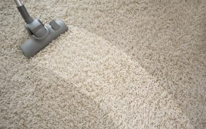 About Professional Floor Covering & Cleaning